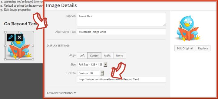 ImageLinks_Step3_Edit Image